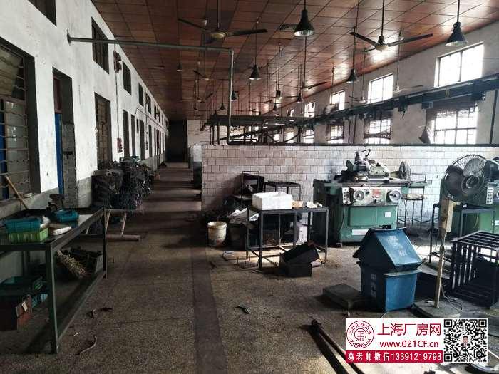 G1771 宝山 杨行镇 铁力路全单层砖混结构三号线沿线3350平方米厂房仓库出租 可分割