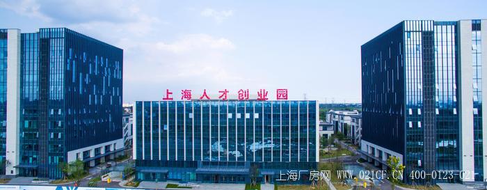 上海人才创业园 嘉兴嘉善产业新城 独栋办公研发楼出租招商 多层可分割研发办公楼出租