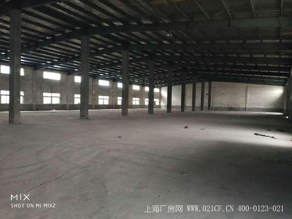 G1915宝山顾村陆陈路单一层厂房仓库出租 2300平 层高8米 1.35元/平/天