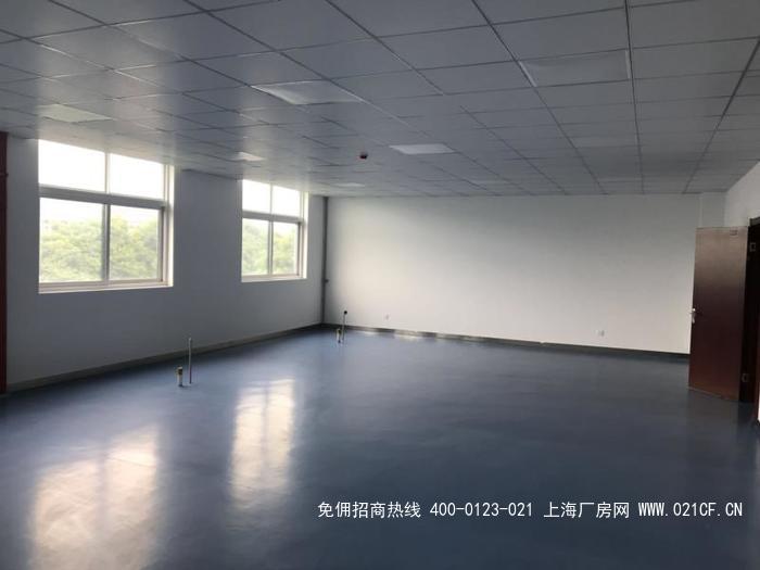 G2021  南京市高淳区经济开发区洁净厂房出租  符合GMP十万级洁净 3000平方 可分租