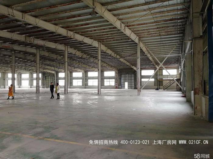 G2029 闵行莘庄工业园区元江路单层独栋厂房出租  104地块 可环评 2000平方米
