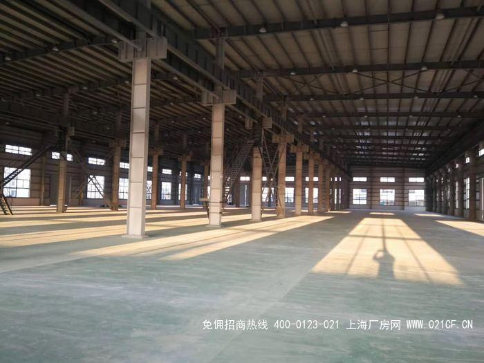 G2044奉贤奉浦开发区 单层可装行车厂房出租 4000平方米  可装20吨行车