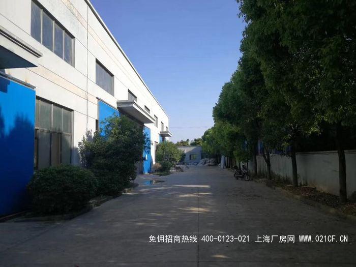 G2059 奉贤青村工业园区1200平,800平,750平 小面积厂房出租 104地块 无税收要求