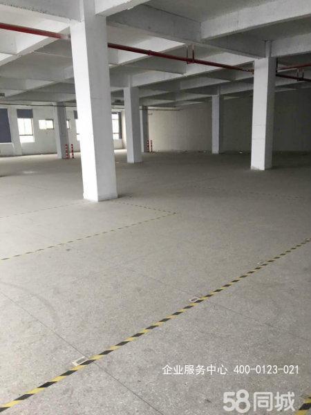 G2446南京泰淮(出租) 江宁单层厂房出租 1200平可分割 办公仓储等都可