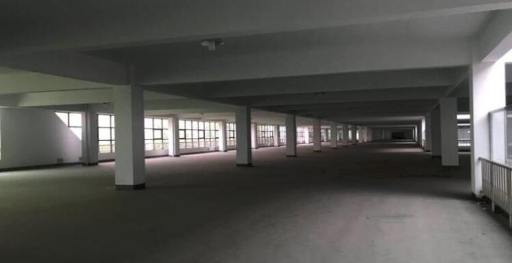 高淳经开区茅山路 独门独院标准厂房出租 5000平方米 层高4.5米