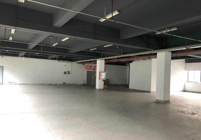 江宁东山办公厂房车间仓库出租  简装可分割  700-2000平
