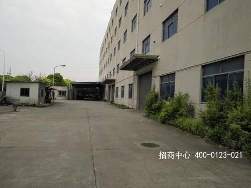 G2550 浦东上海外高桥保税区日樱南路标准仓库出租 可分租