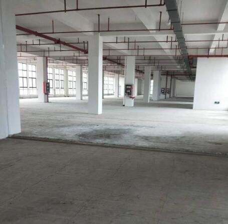 南京江宁 东山 标准厂房 仓库 可做电商 轻加工 厂房出租  可分割