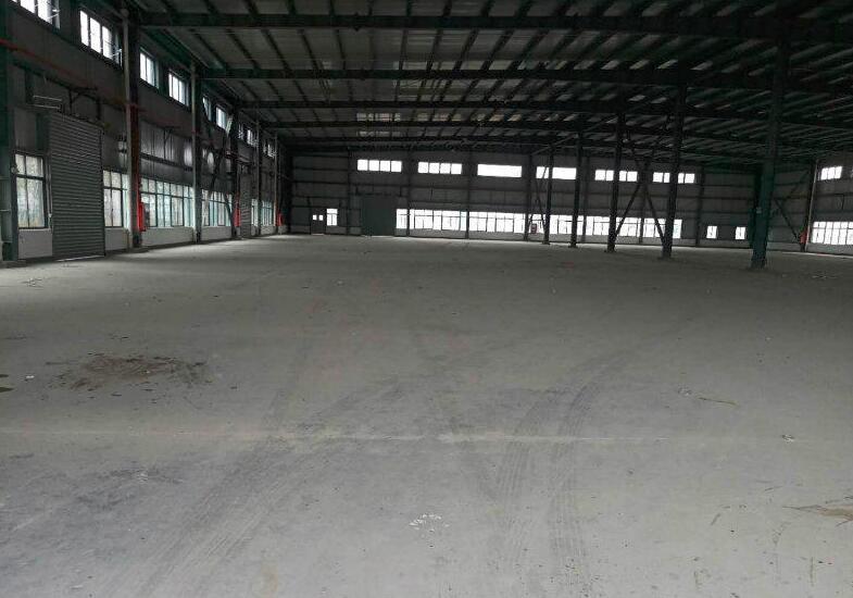 松江工业区 永丰 单层厂房出租 高度10米可生产电商仓储