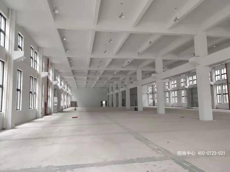 G2653 嘉兴海盐工业园区独门独院3栋三层厂房可分层出租 2000平起租