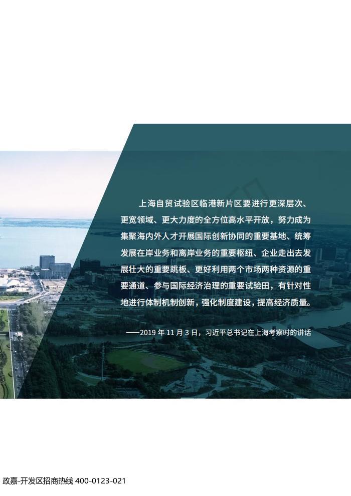 中国(上海)自由贸易试验区临港新片区 国土空间总体规划(2019-2035 年)_02.jpg